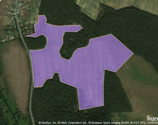 Участок 43.7 га под коттеджный поселок, Ямкино, Ногинский район