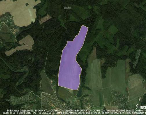 Участок 207.66 га под коттеджный поселок, Каменское, Наро-Фоминский район