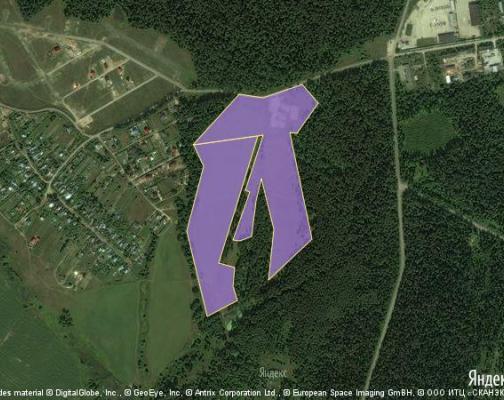 Участок 14.1 га под коттеджный поселок, Бортнево, Пушкинский район