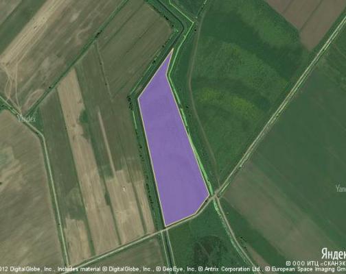 Участок 10.0 га под сельскохозяйственную деятельность, Софьино, Раменский район