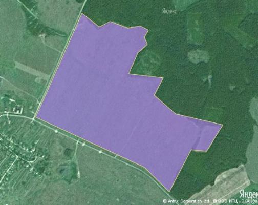 Участок 205.17 га под сельскохозяйственную деятельность, Новоникольское, Шаховской район
