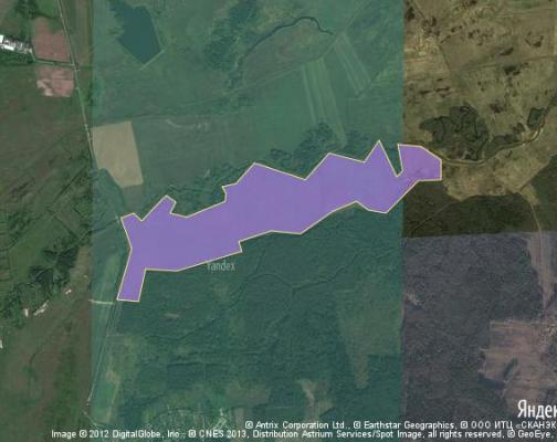 Участок 202.72 га под сельскохозяйственную деятельность, Раздолье, Клинский район